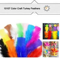 Buy cheap Assorted Color Craft Turkey Feathers for Kids DIY Project product