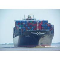 Buy cheap Shenzhen - Houston shipping line from wholesalers