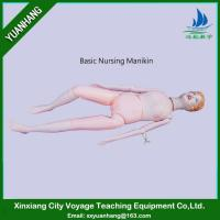 Basic Nursing Manikin