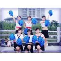 Buy cheap Cheerleader Pom Pom Set with 2pcs for Sports product