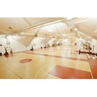 Buy cheap Basketball Courts Flooring IdealTiles Outdoor and Indoor Court Tile Backyard Court for Basketball Co from wholesalers