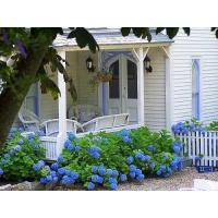 Buy cheap Country Living: Cottage Style Decorating, Cottage Gardens, Decor Ideas from wholesalers