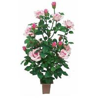 Buy cheap Silk Plants - Pink Rose Bush from wholesalers