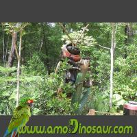 Buy cheap Outdoor artifical animatronic insect firefly replica statue for decoration garden from wholesalers