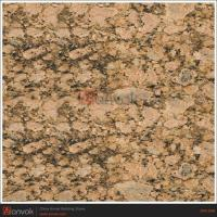 Buy cheap granite color Giallo Fiorito granite stone STG-040 from wholesalers