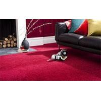 Buy cheap Twist Carpets from wholesalers