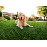 Buy cheap ARTIFICIAL GRASS FOR PET from wholesalers