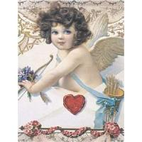 Buy cheap Culture CHERUB from wholesalers