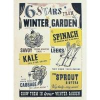 Buy cheap Culture 6 Stars from Winter Garden product