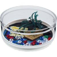 Buy cheap Pirate Punch Compartment Coaster Caddy from wholesalers