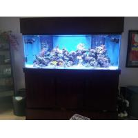 Buy cheap Hanging Fish Tank from wholesalers