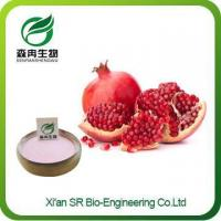 Buy cheap Organic Pomegranate Powder,pomegranate Fruit Powder Supplier,pomegranate Juice Powder Wholesale from wholesalers