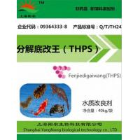 Buy cheap Decomposition of Mordecai (THPS) from Wholesalers