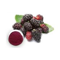 Buy cheap GMP factory 1% 1-DNJ mulberry leaf extract from wholesalers