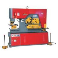 Buy cheap Q35Y-20 Hydraulic ironworker Hydraulic punching machine from wholesalers