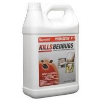 China Bed Bug & Flea Spray on sale