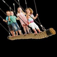 Buy cheap Commercial use rope swing 'Goliath' from wholesalers