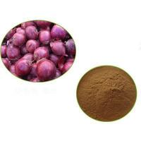 Time Honored Factory Price real dried red onion powder