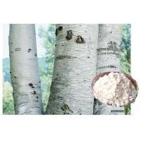 Buy cheap Natural Betulinic Acid CAS 472-15-1 (White Birch Bark Extract) from wholesalers