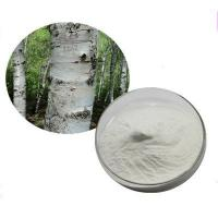 Buy cheap White Birch Extract Betulin, Betulinic acid 70%80% 90% 95% 98% HPLC from wholesalers