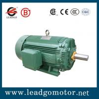 Tefc squirrel cage motor s quality tefc squirrel cage for Tefc motor class 1 div 2