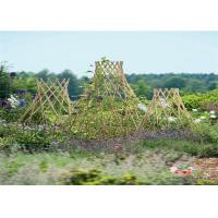Buy cheap Bamboo Garden Stakes Bamboo Trellis Fence Bamboo Garden Stakes For Plant Support from wholesalers
