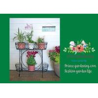 Buy cheap Herbs Graceful Metal Plant Stands / Ladder Plant Stand Powder Coated from wholesalers