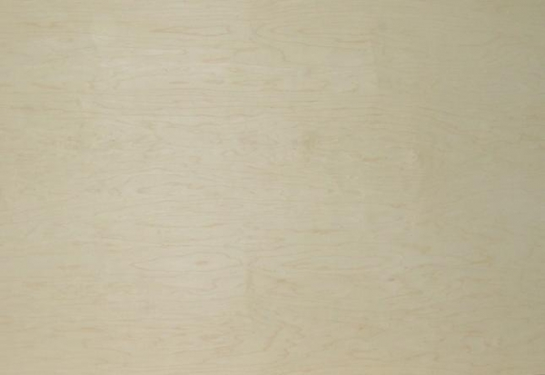 R c natural maple plywood