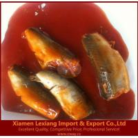 Buy cheap canned fish Product name:canned mackerel in tomato sauce from wholesalers