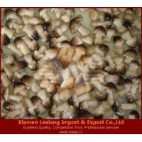 Buy cheap canned edible fungus Product name:canned peeled straw mushroom 1 from wholesalers