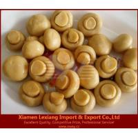 Buy cheap canned edible fungus Product name:canned mushroom whole in brine from wholesalers