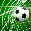 Buy cheap Heavy-duty Polyethylene Soccer Goal Netting from wholesalers