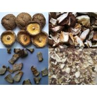 Buy cheap Dried Shitake from wholesalers