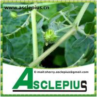 Buy cheap Strong for man Tribulus Terrestris Extract powder from wholesalers