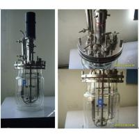 Buy cheap Health Bioreactor Series  Cell culture bioreactors glass-type from wholesalers