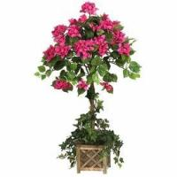 Buy cheap Silk Bougainvillea Topiary with Wood Box from wholesalers