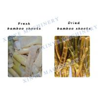 Spring Bamboo Shoots Dryer/Fruit and Vegetable Processing Plant swirl type dryer
