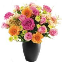 Buy cheap Funeral Let the florist choose! from wholesalers