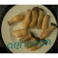 Buy cheap Brine King Oster Mushroom product