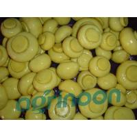Buy cheap Brine Champignon Mushroom from wholesalers