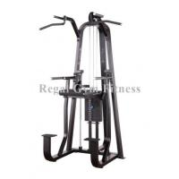Buy cheap China Top Fitness Equipment Store online DiP Chin Assist (RP007) from wholesalers