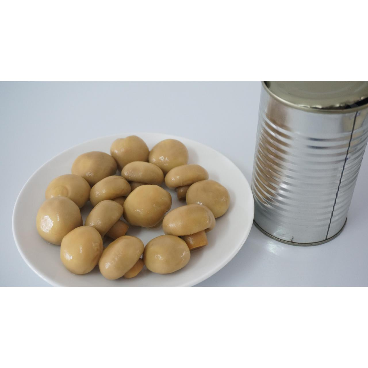Buy cheap Canned Champignon Mushroom from wholesalers