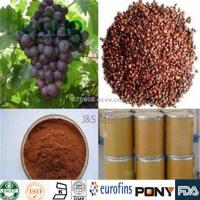 Buy cheap Glycosides  Grape Seed Extract from wholesalers
