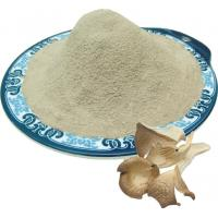 Buy cheap Oyster mushroom powder product