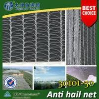 Buy cheap agriculture Anti-hail HDPE netting / 30101-50 from wholesalers