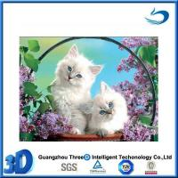 Buy cheap Cat Beautiful cat 3d pictures natural animation from wholesalers