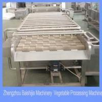 spray washing machine for fruits and vegetables