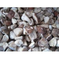 Buy cheap Frozen Mushrooms Frozen Boletus Edulis Pieces GT4003-1 from wholesalers