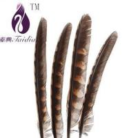 chicken feather trims,pheasant feather ribbons/fringes for cloth accesory