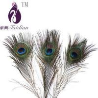 Buy cheap natural Peacock feathers,plume feathers for decoration from wholesalers